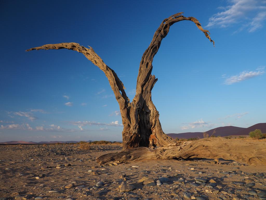 Namibia  3