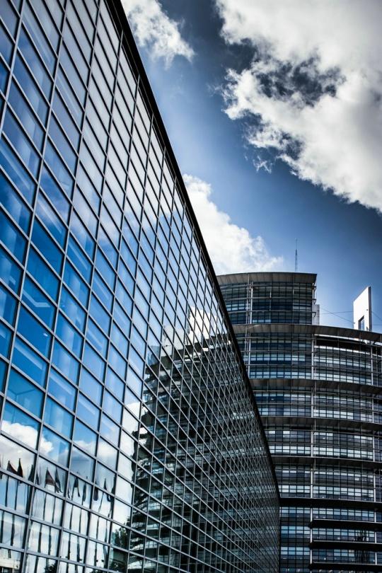Elvan Biondic -- Europäisches Parlament - Strasbourg