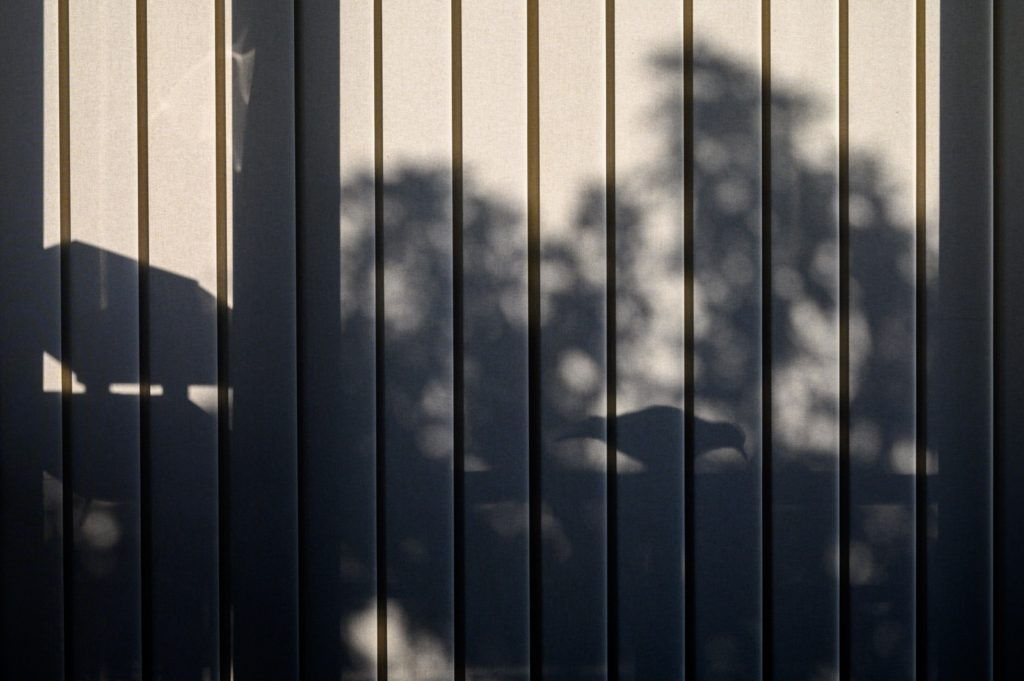 Schatten_Thomas Kern