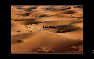 Klein Manfred - Wüste Marokko